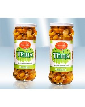 """Μανιτάρια Τουρσί με Μέλι και σκόρδο """"Tjoscha"""" 580gr"""