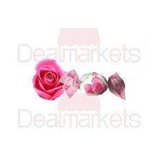 Lavita τσάρλεστον τριαντάφυλλο 1kg