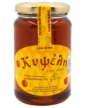 Κυψέλη μέλι ελληνικό άνθη και κωνοφόρα 454gr